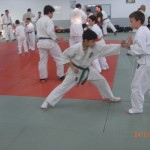 ארוע 100 קרבות 2012 (65)
