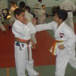 ארוע 100 קרבות 2012 (56)