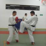 ארוע 100 קרבות 2012 (33)