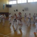 תמונות ממחנה אימונים בוגרים 2012 (157)