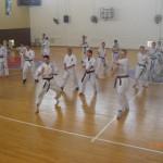תמונות ממחנה אימונים בוגרים 2012 (156)