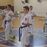 תמונות ממחנה אימונים בוגרים 2012 (153)
