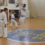 תמונות ממחנה אימונים בוגרים 2012 (145)
