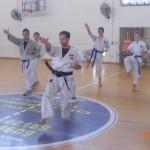 תמונות ממחנה אימונים בוגרים 2012 (143)