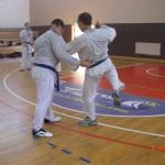 תמונות ממחנה אימונים בוגרים 2012 (141)