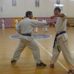 תמונות ממחנה אימונים בוגרים 2012 (132)
