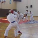 תמונות ממחנה אימונים בוגרים 2012 (113)