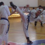 תמונות ממחנה אימונים בוגרים 2012 (108)