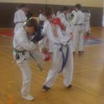 תמונות ממחנה אימונים בוגרים 2012 (9)